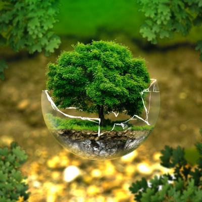 Environmental protection 326923 960 720